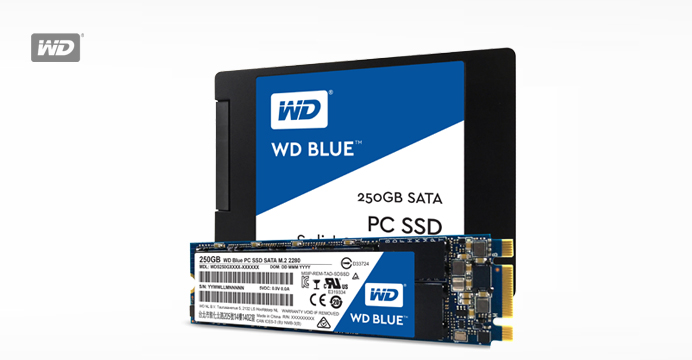 WD BLUE SSD 250GB 3년보증