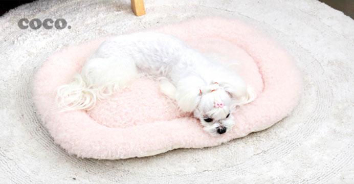 코코 뽀글이 타원형 강아지방석