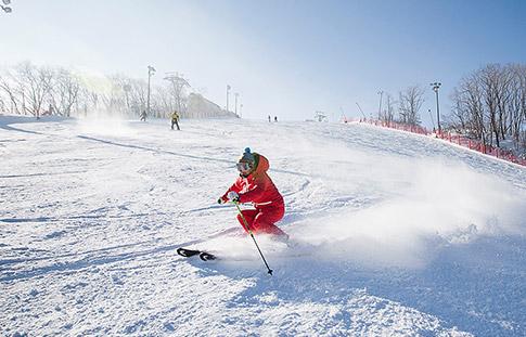 [국내] 스키