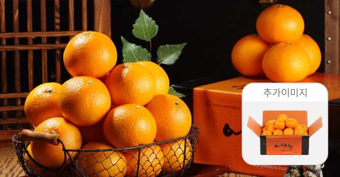 2개구매5kg발송/ 제주 오렌지 청견 2kg