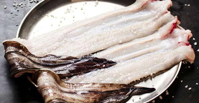 정용길 생산자의 통영 자연산 바다장어 1kg