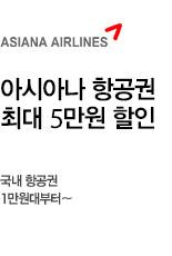 [항공] 아시아나 국내항공